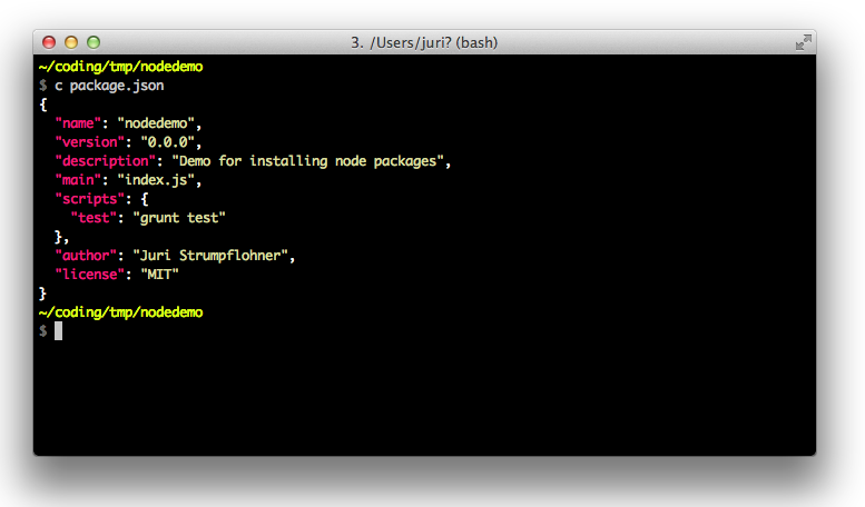 Example of a package.json file