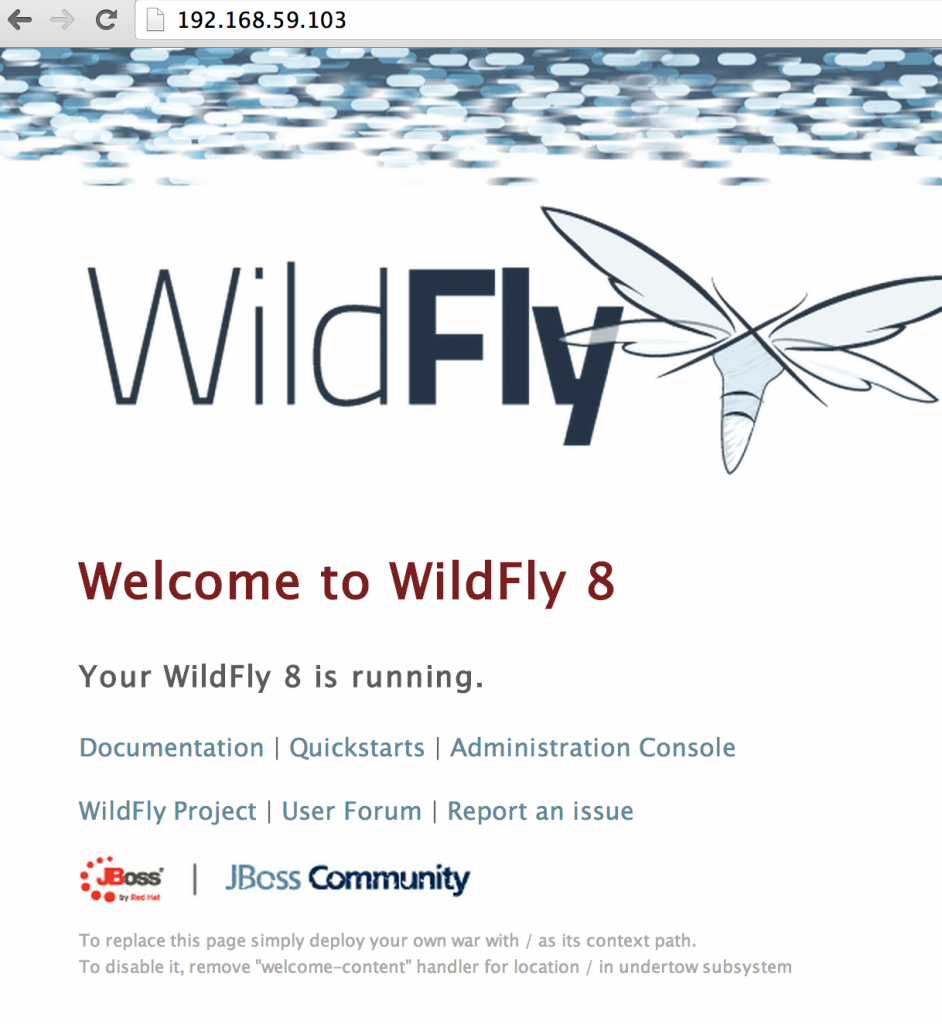 wildfly-output-techtip39-942x1024