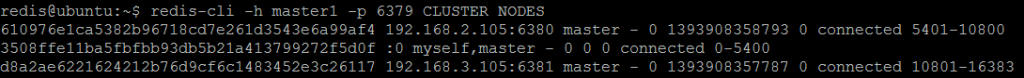 Picture 8. CLUSTER NODES shows hash slots served by each master node.
