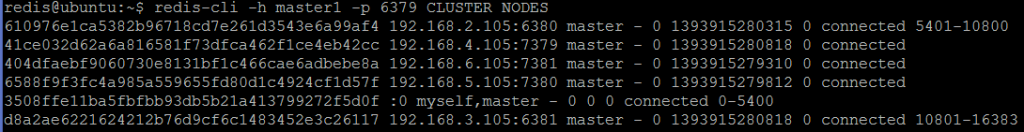 Picture 9. CLUSTER NODES shows all six nodes as masters.