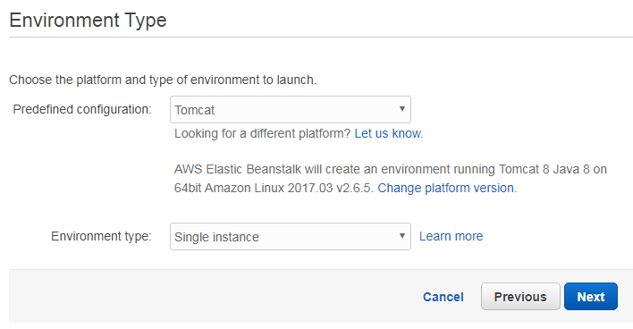 Amazon Elastic Beanstalk environment type